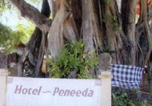 peneeda_beach_hotel_093959_180608 (1)