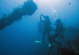 bv-005_-_fun_diving_011512_20808