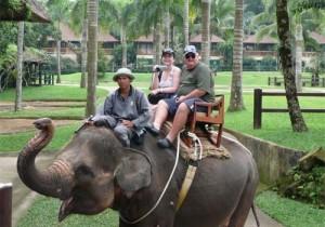 bv-039_-_elephant_safari__113417_110708